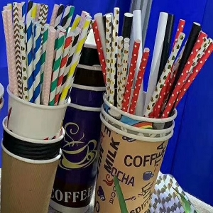 Craft Paper Straw